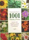 ENCICLOPEDIA PRACTICA 1001 PLANTAS Y FLORES